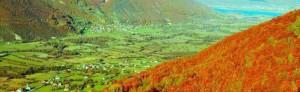 cropped-dolina-p-g.jpg