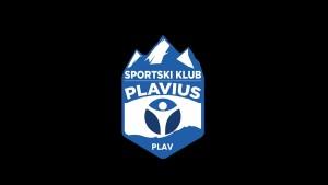logo plavius